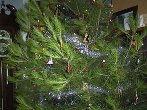 Christmas tree 2005 - closeup