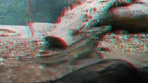 Taronga - lizard 3D